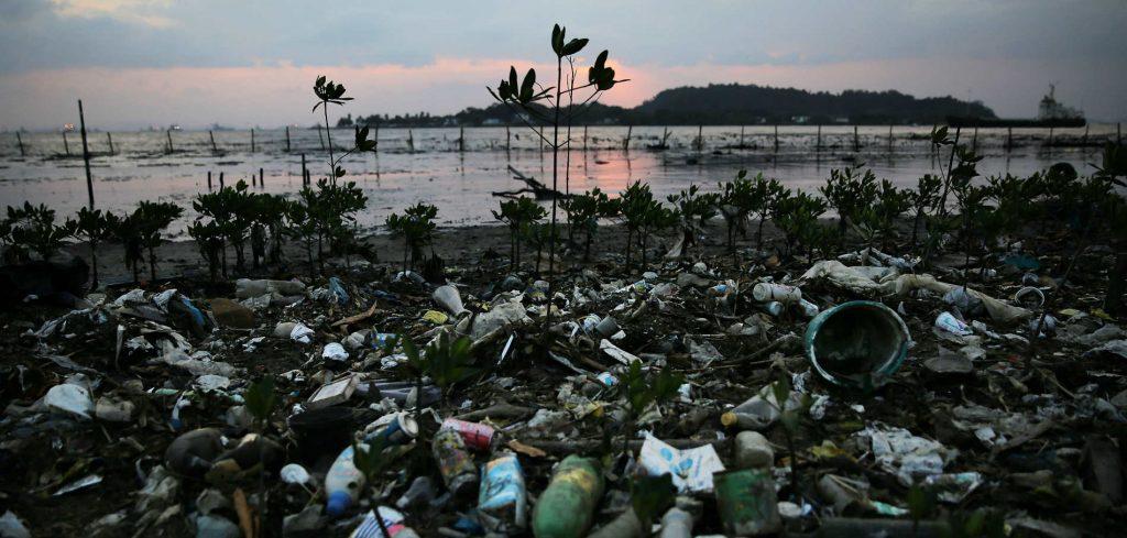 Jeux-olympiques-la-baie-de-Rio-medaille-d-or-de-la-pollution_exact1900x908_l