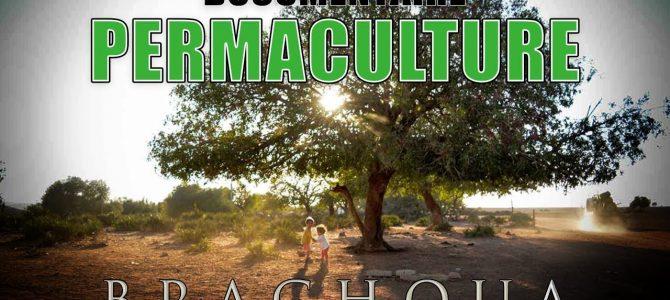 Le Maroc, modèle du développement durable en Afrique (1/2): Un doc de Stéphane Ferrer-Yulianti
