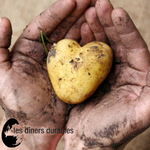 diners_durables_patates