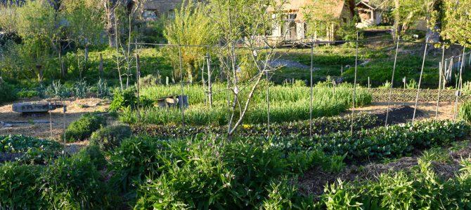 #Normandie, France: La ferme du Bec Hellouin, un modèle au niveau mondial !