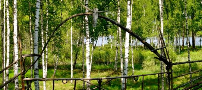Dans les forêts suédoises, Växjö, la ville «la plus verte» d'Europe !